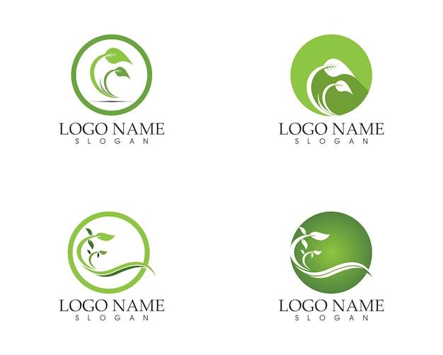 自然の葉のアイコンのサインロゴ