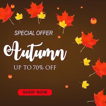 秋のビッグセール割引