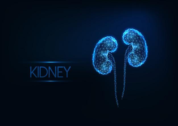 暗い青色の背景に分離された未来の輝く低多角形の人間の腎臓。