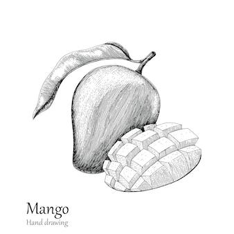 Манго ручной рисунок стиль гравировки