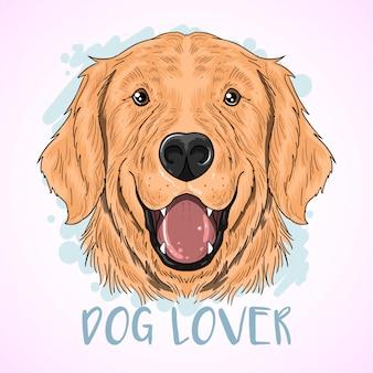 ゴールデンレトリーバー犬