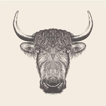 雄牛の頭のイラスト、手描きデザイン。