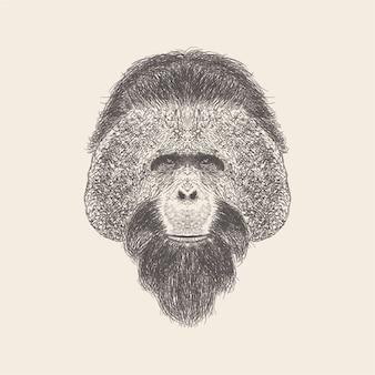 Иллюстрация головы шимпанзе, дизайн нарисованный рукой.