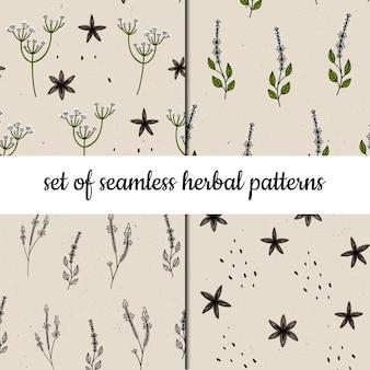 ベクトルシームレスパターンのセット。ハーブと植物。