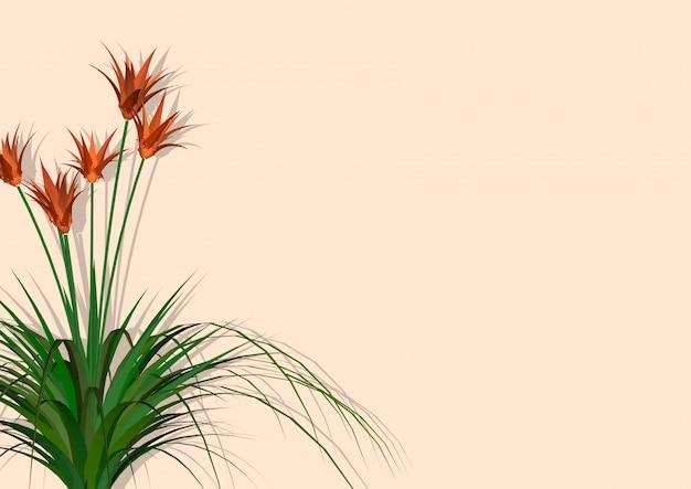 Красивый фон лилии
