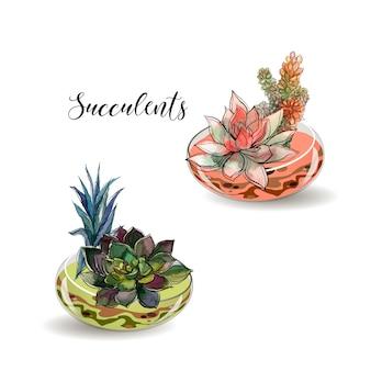 ガラスの鍋の中の多肉植物