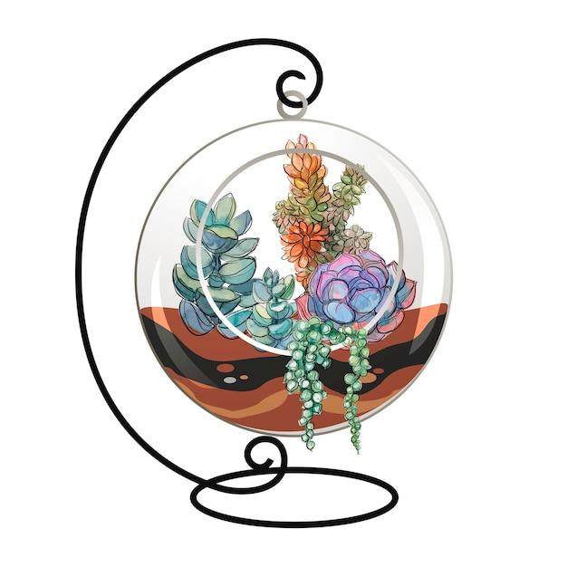 Суккуленты в декоративном аквариуме для цветов.
