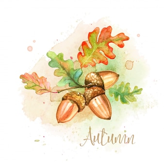 Акварельная осенняя открытка с желудями и дубовыми листьями