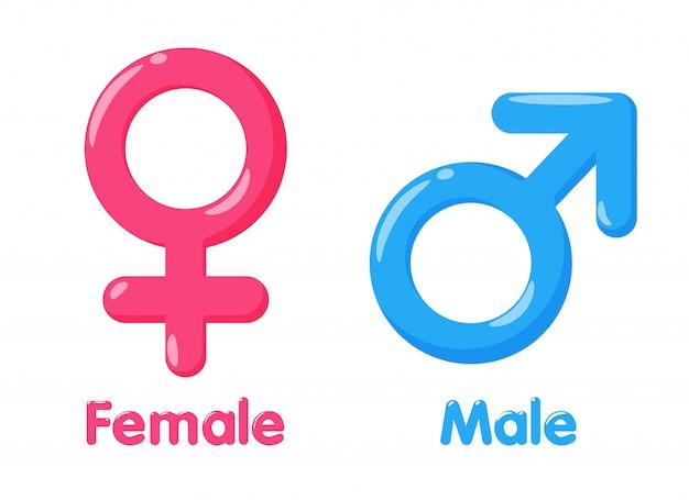 性別のシンボル。男女の性別および平等の意味