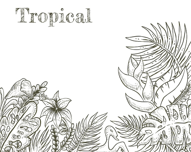 熱帯の手描きのベクトル図