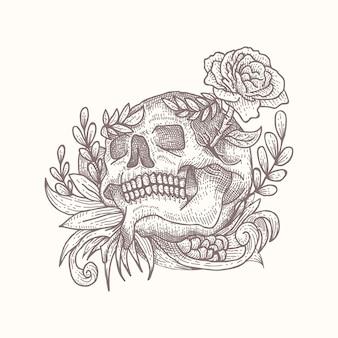 頭蓋骨の装飾ベクトルイラスト