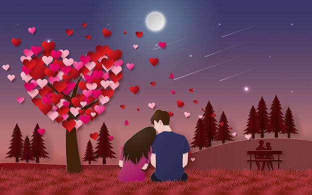 公園で流星を探している草の上に座ってカップル