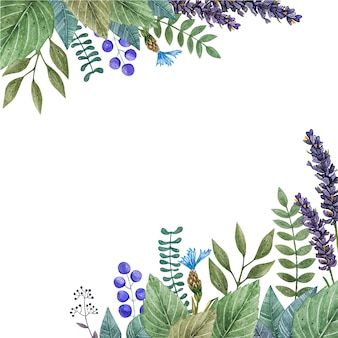 カラフルな野生の花の水彩ベクトルフレーム。