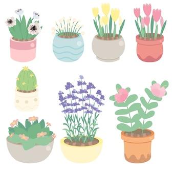 ポットコレクションのかわいい小さな花