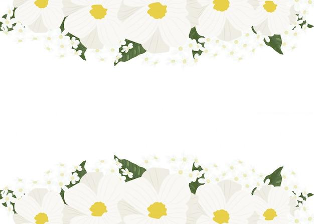 白いコスモスとゴールデンフレームと緑のアジサイの花