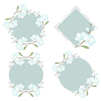 Белая голубая магнолия или жасминовый венок