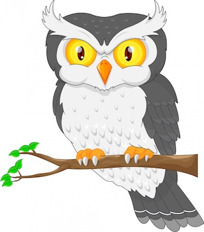 Мультфильм сова птица позирует на дереве