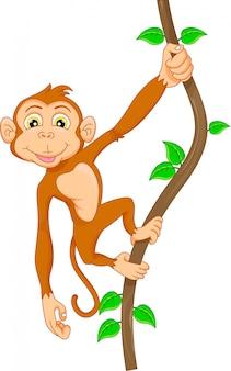 Мультфильм обезьяна висит на дереве