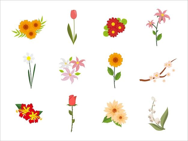 Набор декоративных цветочных растений
