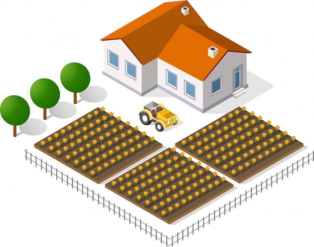 住宅と庭園