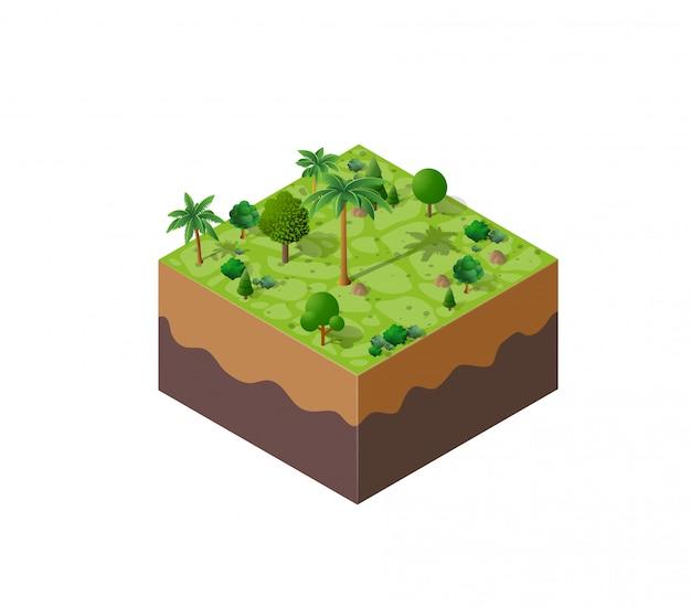 自然林の風景