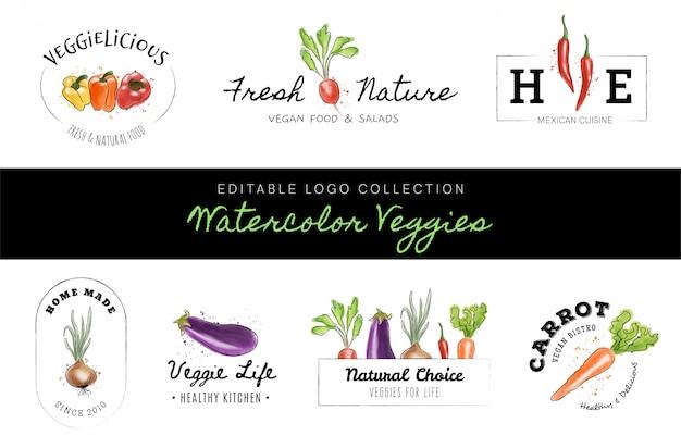 編集可能なロゴコレクション - 水彩野菜