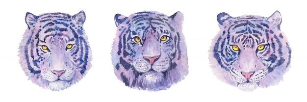 Акварельный реалистичный тигр