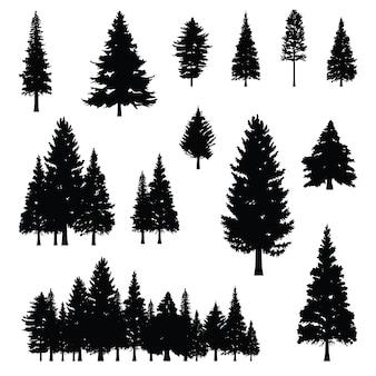 針葉樹の針葉樹の針葉樹のシルエット