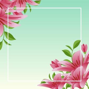 青い空と夏春咲く花自然フレーム