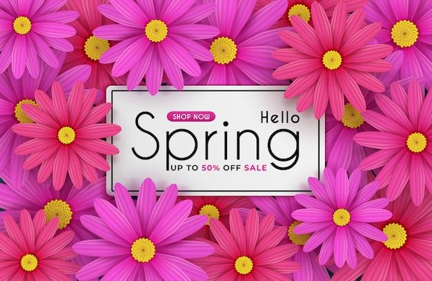 季節の春にデイジーの花が咲きます