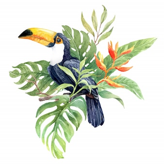 Акварельная птица тукан на ветке с тропическим листом