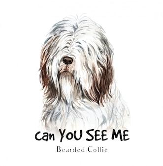 印刷用のひげを生やしたコリー犬の水彩画。