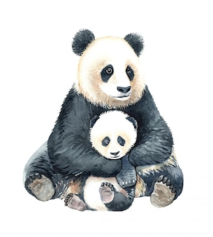 水彩パンダ抱擁赤ちゃんパンダのイラスト。