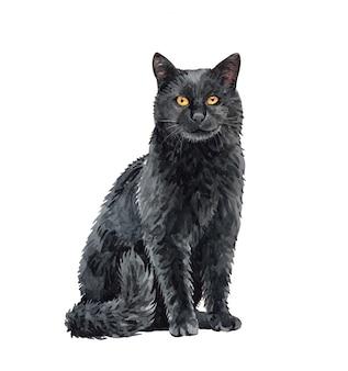 Акварель черная кошка сидит. краска акварельная кошка.