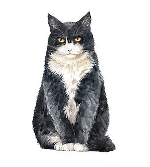 Акварельная кошка британская короткошерстная сидя.