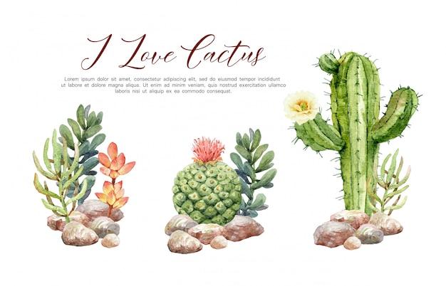Акварельная коллекция кактусов в камнях.
