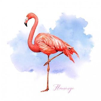 Акварель тропическая птица фламинго с красочным фоном.