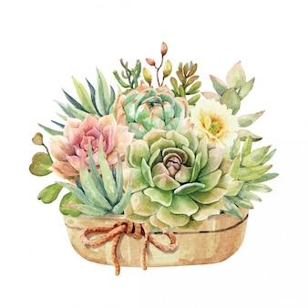 水彩サボテンと多肉植物の鍋とロープのリボン。