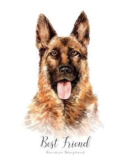 水彩の手描きの肖像画ジャーマンシェパード犬
