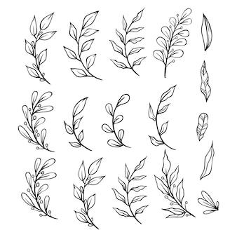枝と葉を持つ手描き花飾りのコレクション。装飾用の装飾的な要素