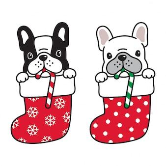 クリスマス靴下で犬のフレンチブルドッグ
