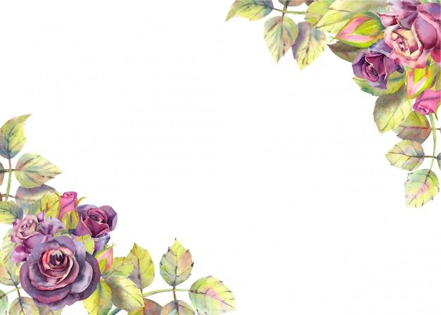 バラの花を持つ水平の背景。水彩組成