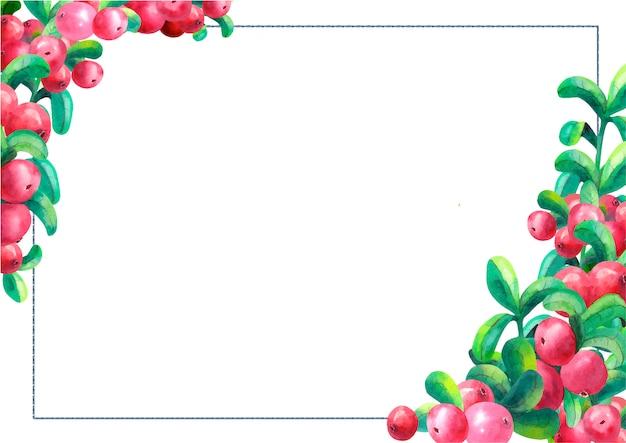 分離した白い背景に熟したクランベリー