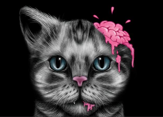 Дизайн мозга зомби кошка