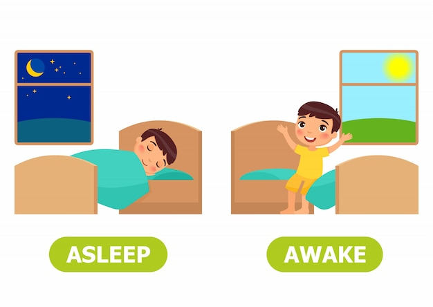 眠りと目を覚ましイラスト。