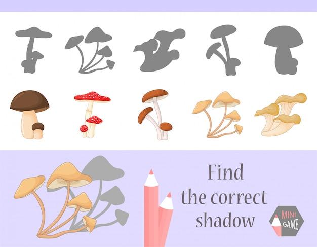 Найти правильную тень, обучающая игра для детей. милый мультфильм животных и природы. векторная иллюстрация