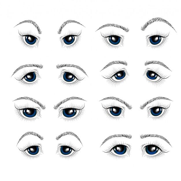 女性の目、まつげ、眉毛のイラスト。
