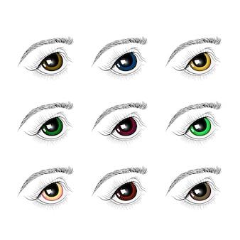 異なる色の目のセット