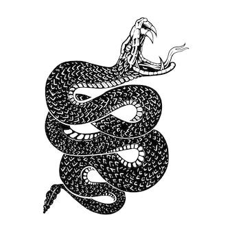 ガラガラヘビ、ラインイラスト、スケッチライン