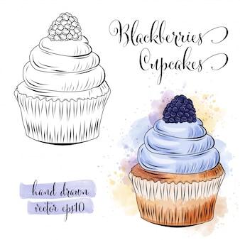 ブラックベリーで美しい手描きの水彩カップケーキ